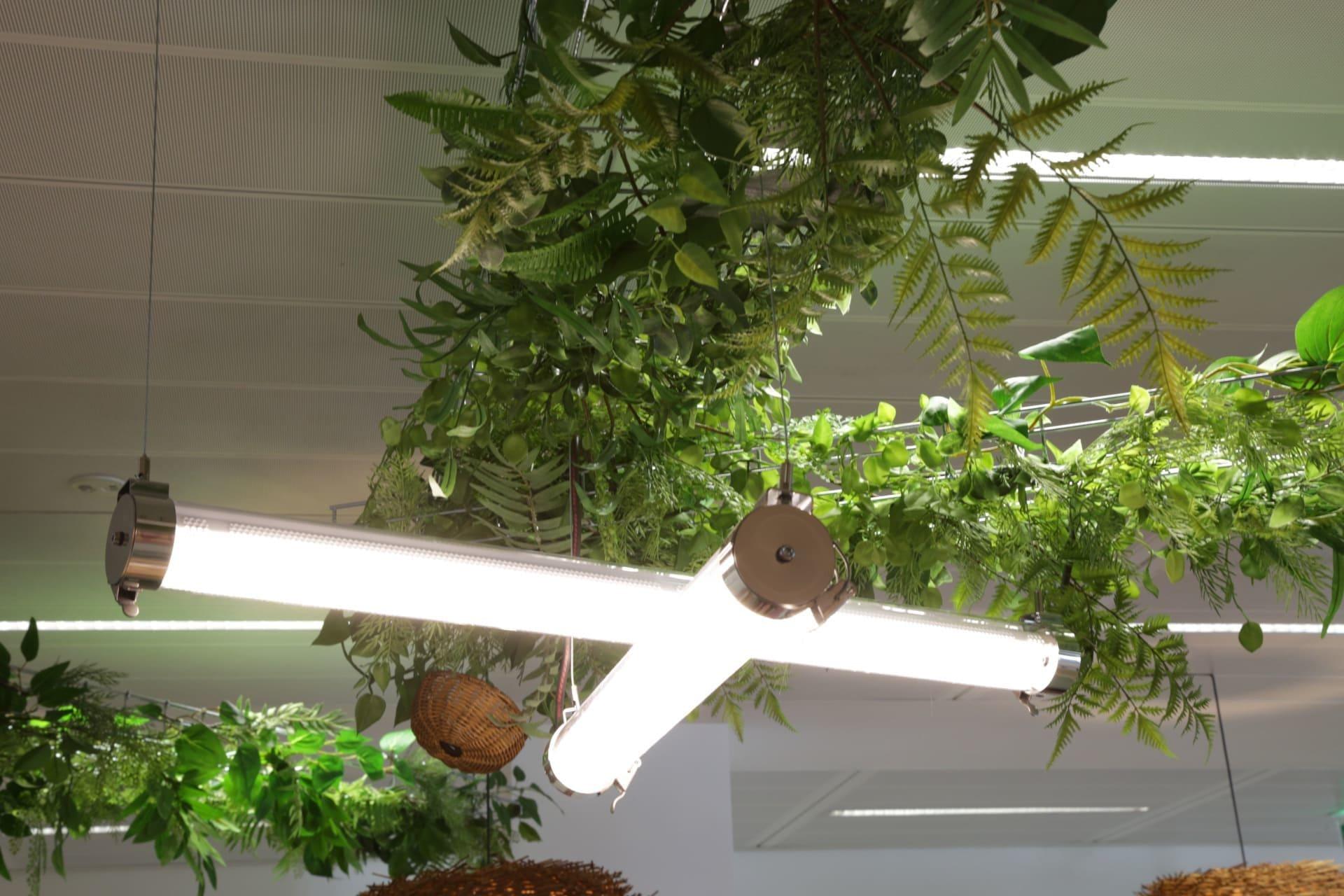 Mise en lumière décorative du Building Solutions